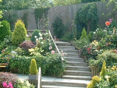 Plantas y jardines de uruguay curso de jardiner a integral for Jardineria y plantas